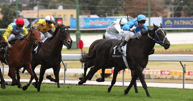 Stoneblack races clear at top of straight
