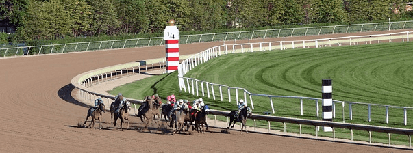 horse racing tpes